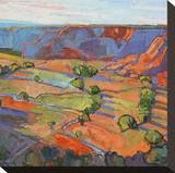 Patterns in Triptych (center) Stretched Canvas Print by Erin Hanson