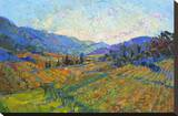 Napa in Color Stretched Canvas Print by Erin Hanson