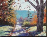 Autumn Delight Stretched Canvas Print by Graham Gercken