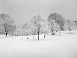 Prospect Park, Brooklyn In Snow2 - Winter Scene With Dog Metal Print by Henri Silberman