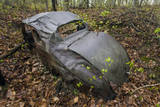 Old Rusted Car in Woods Wall Decal by Henri Silberman