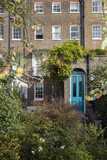 London Garden with Apples and Blue Door (18th Century Row House, Rear View) Wall Decal by Henri Silberman