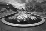 Brooklyn Botanic Gardens Lily Ponds - Infrared Garden Landscape Muursticker van Henri Silberman