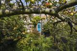 Garden with Apple Tree and Blue Door Muursticker van Henri Silberman