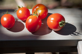 Tomatoes, Close-Up 1 (Oakland, CA) Wall Decal by Henri Silberman