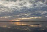 Alameda Shore at Sunset (San Francisco Bay Landscape) Veggoverføringsbilde av Henri Silberman