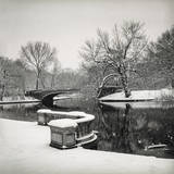 Lullwater Bridge Snow, Prospect Park Wall Decal by Henri Silberman