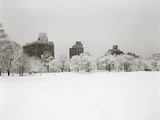 Prospect Park, Brooklyn In Snow - Prospect Park West Buildings Metal Print by Henri Silberman