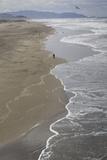 Ocean Beach, San Francisco, CA 2 (Surf, Sand, Shoreline, California Coast, Pacific Ocean) Kalkomania ścienna autor Henri Silberman