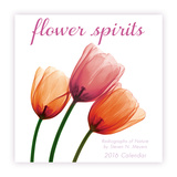 Flower Spirits - 2016 Mini Calendar Calendars