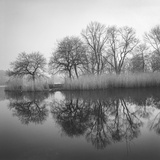 Prospect Park Lake In Morning - Brooklyn Landscape Wall Decal by Henri Silberman