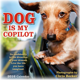 Dog is My Copilot - 2016 Calendar Calendars