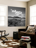 Cloud over Point Reyes, Abbott's Lagoon Wall Mural by Henri Silberman