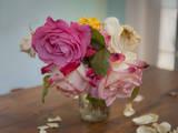 Henri Silberman - Fading Garden Roses - Duvar Çıkartması