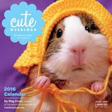 Cute Overload - 2016 Calendar Calendars