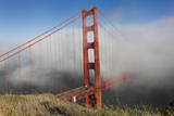 Golden Gate Bridge Tower in Fog 10 Wall Decal by Henri Silberman