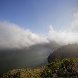 Marin Headlands Landscape (Fog) Wall Decal by Henri Silberman