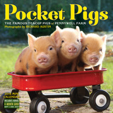 Pocket Pigs - 2016 Mini Wall Calendar Calendars