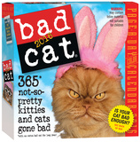 Bad Cat Color Page-A-Day - 2016 Boxed Calendar Calendars