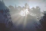 Sunrise, Oakland Hills Autocollant par Henri Silberman