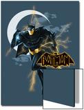 Beware the Batman Animated Series Posters