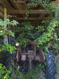 Rusted Tractor with Vines (Chapel Hill, NC) Wallstickers af Henri Silberman