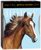 Horse Page-A-Day Gallery - 2016 Boxed Calendar Calendars