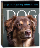Dog Page-A-Day Gallery - 2016 Boxed Calendar Calendars