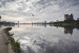 Lake Merritt Seagull and Reflection Wall Decal by Henri Silberman