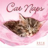 Cat Naps - 2016 Mini Calendar Calendars