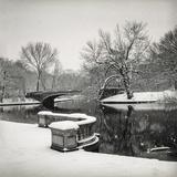 Lullwater Bridge Snow, Prospect Park - Prospect Park, Brooklyn New York Wall Decal by Henri Silberman