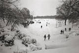 People Walking in the Snow, Prospect Park Wall Decal by Henri Silberman