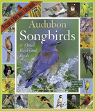Audubon Songbirds & Other Backyard Birds Picture-A-Day - 2016 Calendar Calendars