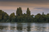 Sunset Skulling on Thames River, London (Exercise, Water Recreation, Hammersmith) Autocollant par Henri Silberman