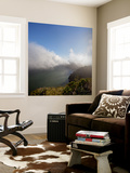 Marin Headlands Landscape (Fog) Wall Mural by Henri Silberman