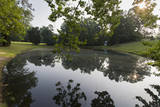 Woodland Pond Sunrise with Reflections Autocollant mural par Henri Silberman