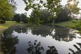 Woodland Pond Sunrise with Reflections Autocollant par Henri Silberman
