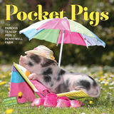 Pocket Pigs - 2016 Calendar Calendars