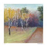 County Road Giclee Print by David Skinner