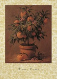 Peach Tree Prints by Joaquin Moragues
