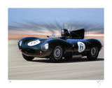 D Type Jaguar Giclee Print by Breck Rothage