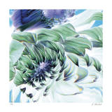 Dancing Dahlia Giclee Print by Kate Blacklock