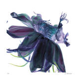 Night Bloom 1 Giclee Print by Kate Blacklock