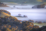 Light and Fog Moving Through Petaluma Hills, California Photographic Print by Vincent James