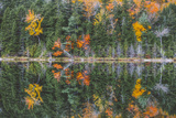 Pond Reflection Detail, White Mountains, New Hampshire Photographic Print by Vincent James