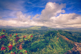 View from the Sleeping Giant, Kauai Hawaii Photographic Print by Vincent James
