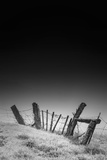 Twisted Fence and Morning Fog, Petaluma California Photographic Print by Vincent James