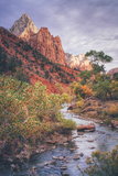 Morning in Zion Canyon, Southwest Utah Photographic Print by Vincent James