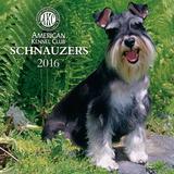 Schnauzers  - 2016 Calendar Calendars