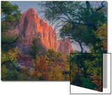 Watchman and Fall Frame, Zion Southwest Utah Art by Vincent James